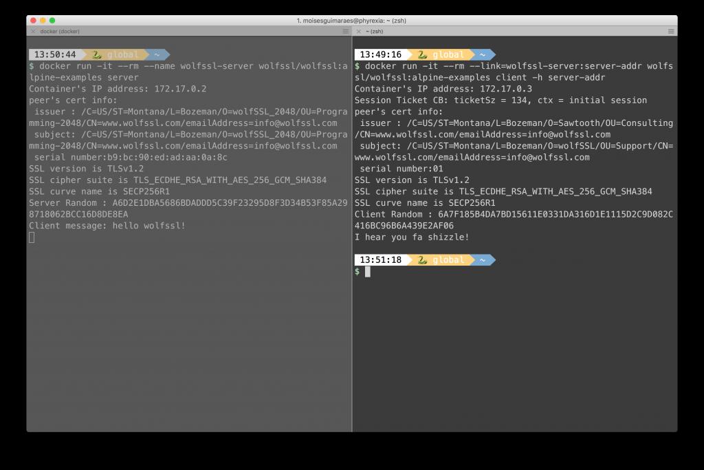 wolfSSL at Docker Hub - wolfSSL