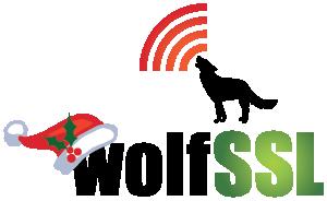 wolfSSL Christmas Logo